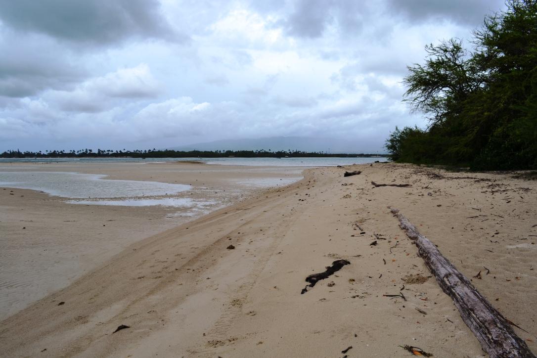 Beach long-view