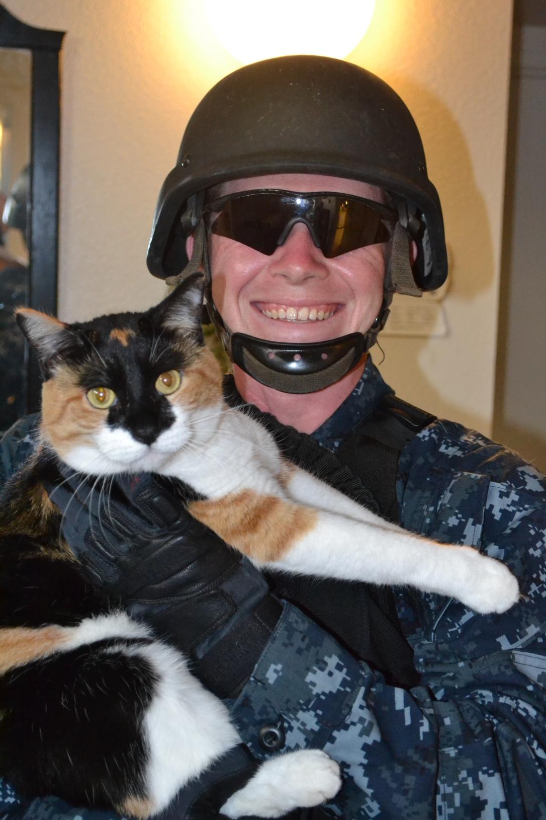 Combat kitty?