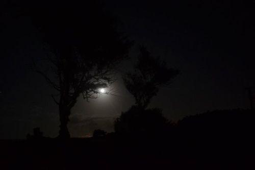 Erdman moonrise