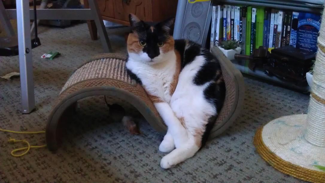1/4/12 Leena's new seat