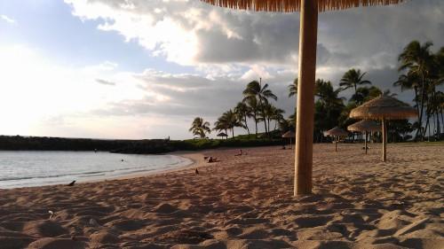 1/9/2012 beach umbrellas