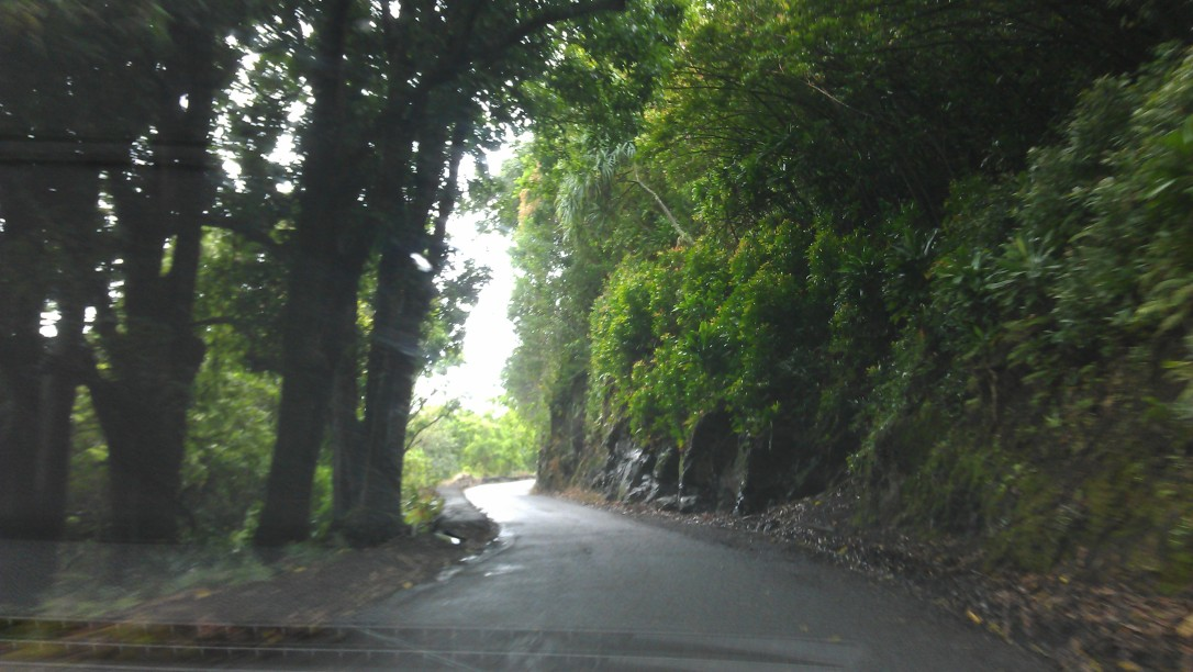 2/21/2012 Rainy Road to Hana