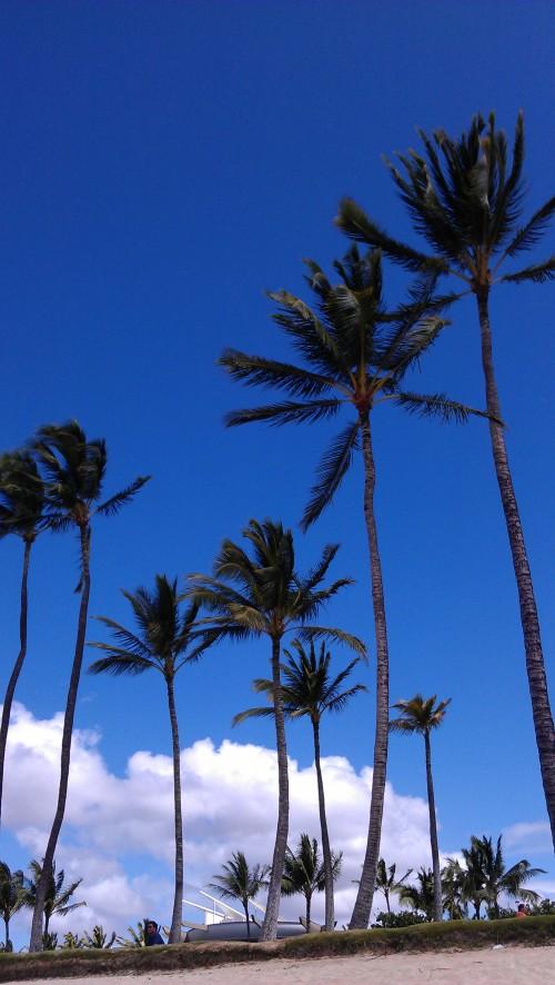 2/23/2012 Blue sky beach day