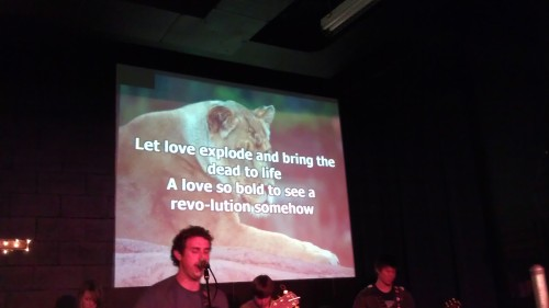 3/28/2012 lion photo on the screen