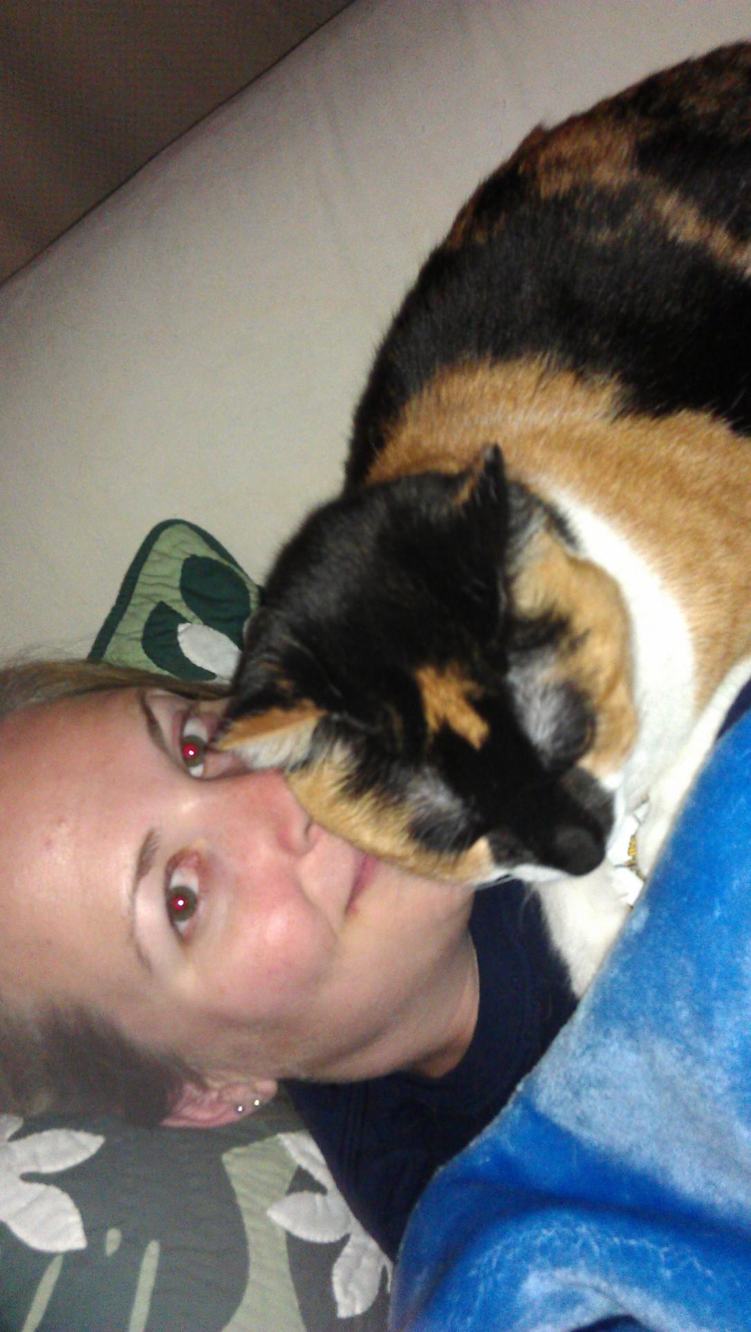 4/3/2012 kitty snuggles