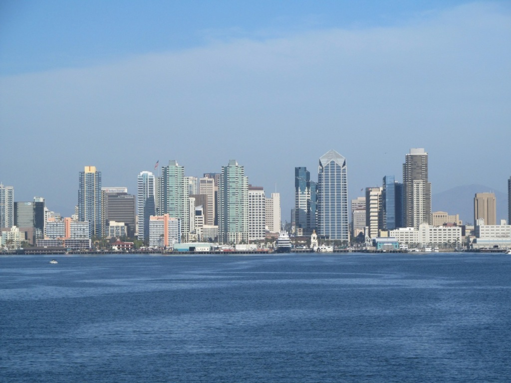 Whale Watching San Diego skyline
