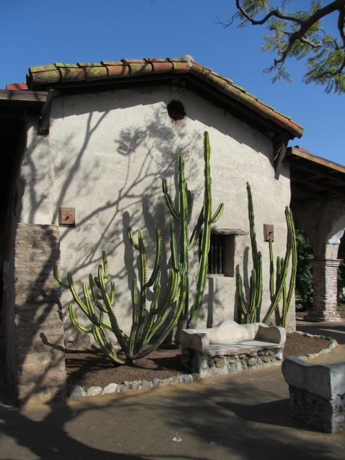 San Juan Capistrano swallow nest wall