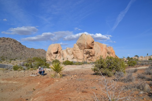 Joshua Tree rock monument