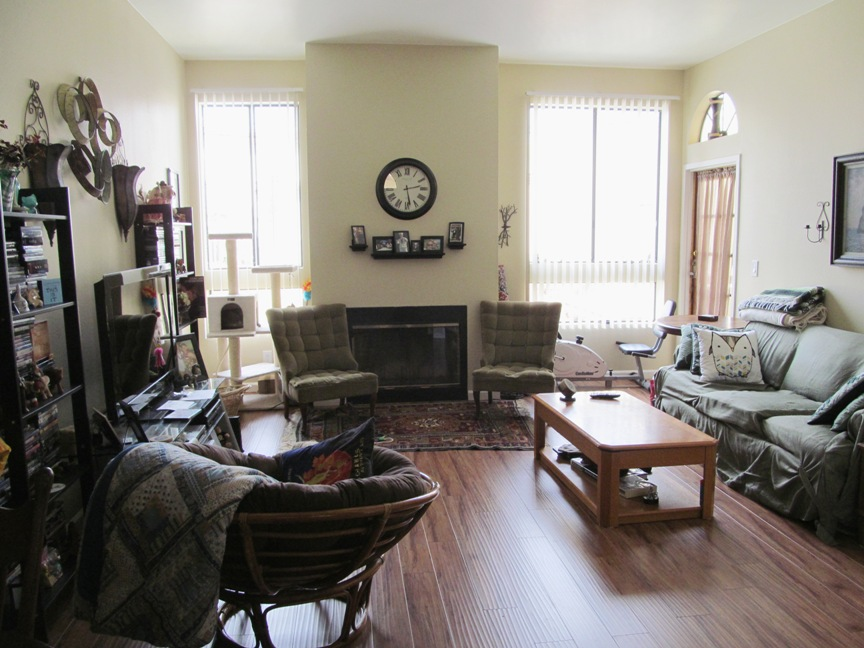 San Diego condo, living room wide