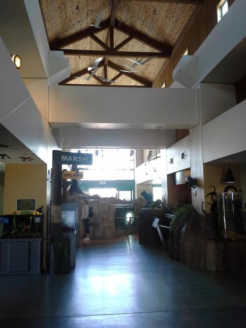 Living Coast Discovery Center, insid