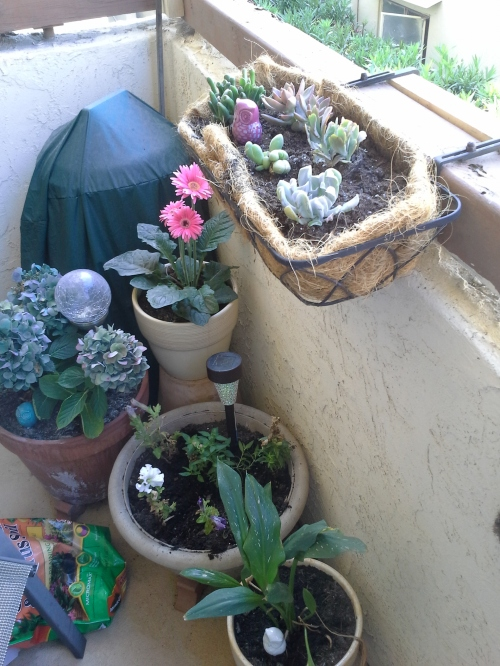 container garden, refreshed