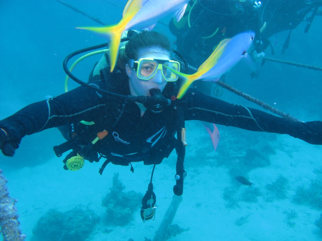 Australia, Port Douglas, Great Barrier Reef diving Jo