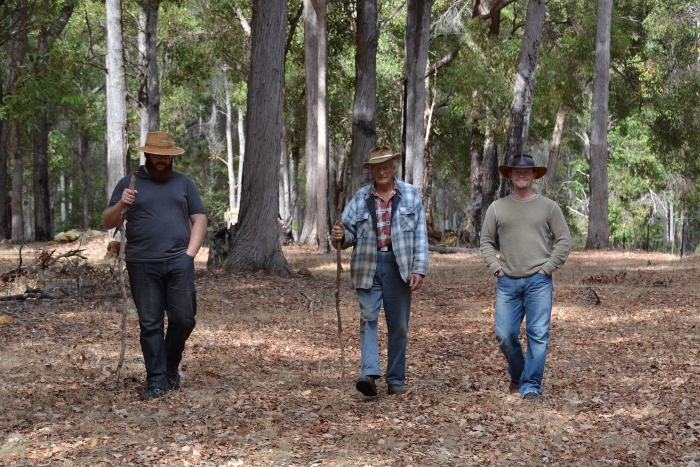 Australia, Nannup farm walking