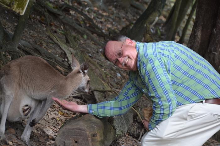 Australia, Port Douglas, dad feeding kangaroo