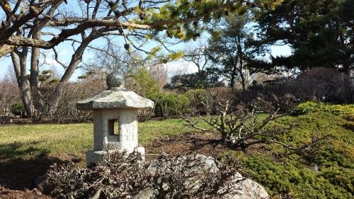 BotanicGarden Japanese garden